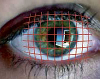 Eye Trackers, Gaze Control and Blink switches.