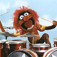7. Testing: The Muppet Show's 'Animal' on drums.
